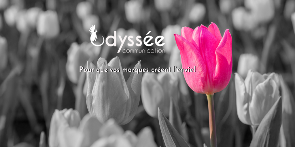 couverture-odyssee-communication